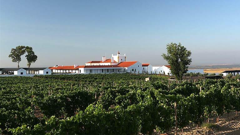 As maravilhosas vinícolas do Alentejo que também são hotéis