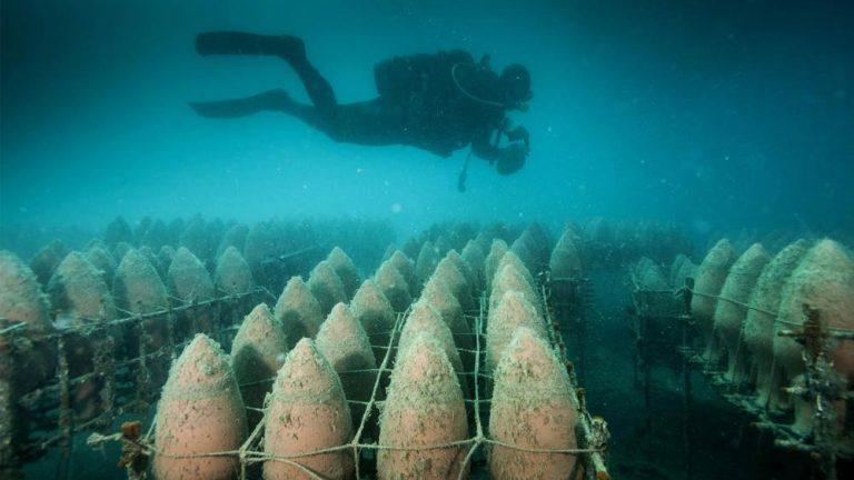 Vinícola da Croácia envelhece seus vinhos no fundo do mar!