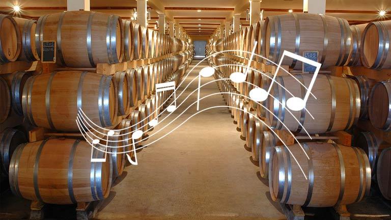 Vinícolas estão tocando música para seus vinhos ficarem melhores