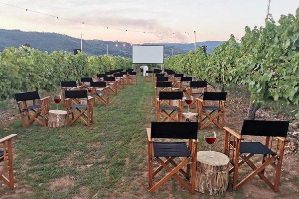 Cinema e Vinho: Região dos Vinhos Verdes exibe filmes ao ar livre no meio de vinícolas