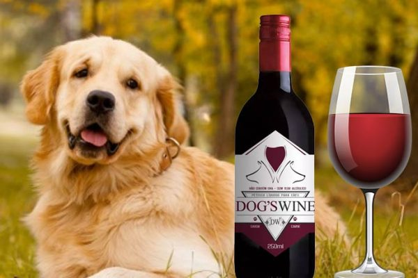 Dog's Wine, um vinho bom pra cachorro!