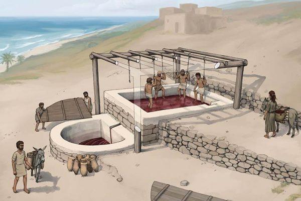 Arqueólogos encontram fábrica de vinho dos fenícios de 2.600 anos