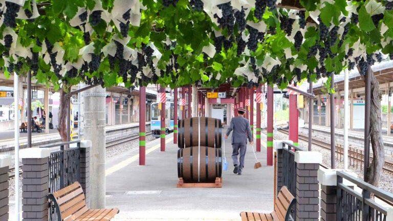 Cidade japonesa tem vinhedo dentro da estação de trem e primeiro vinho já lançado!
