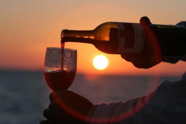 Vinhos do Cerrado: 4 vinícolas em Goiás que todo amante de vinhos precisa conhecer