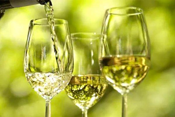 Vinho Verde: O que é? Conheça suas características!