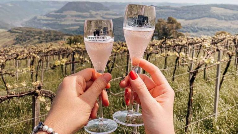 Rota dos Vinhos da Serra Gaúcha: Guia das vinícolas que valem a visita!